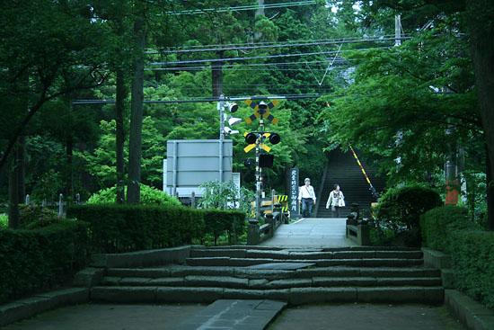 鎌倉・明月院 あじさい